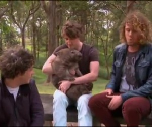 a, the wombats, and WITH image