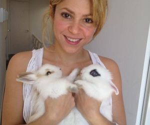 adorable, idol, and queen shakira image