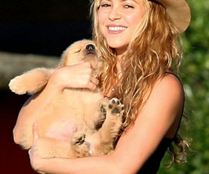 idol, puppy, and queen shakira image