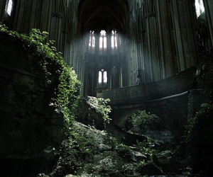 nature, church, and abandoned image