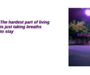 pale, purple, and twitter header image