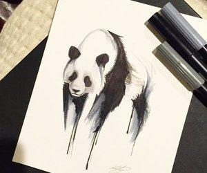 draw, panda, and art image
