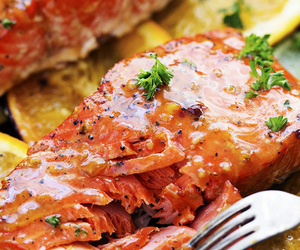food, salmon, and grilled image