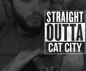 cat, james arthur, and kitten image