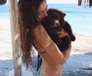 animal, bear, and girl image