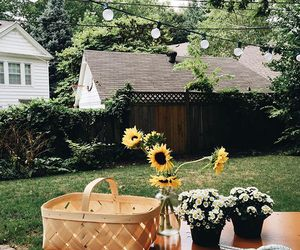 autumn, garden, and flowers image
