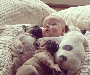 baby, dog, and dreaming image