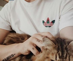 cat, marley, and tattoo image