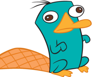 perry, phineas and ferb, and perry the platypus image