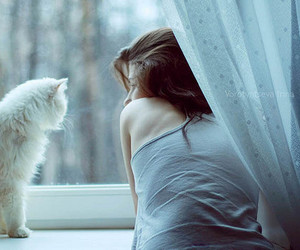 cats, window, and girl with cat image