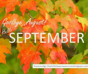 August, fall, and goodbye image