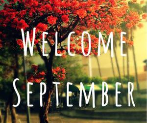 September, autumn, and frases image
