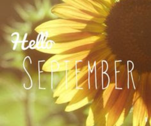 September, hello, and flower image