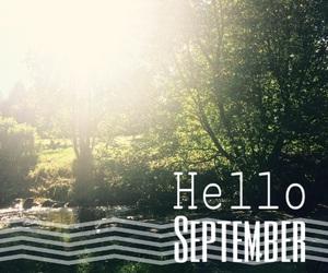autumn, hello, and nature image
