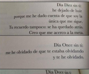 frases, book, and desamor image