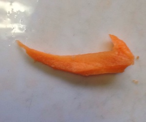 carrot and nike image