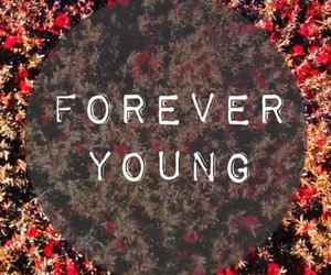 young, forever, and flowers image