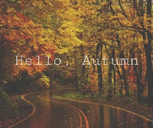 autumn, fall, and hello image