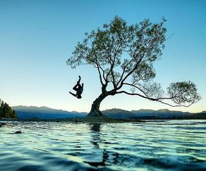 amazing, blue, and nature image