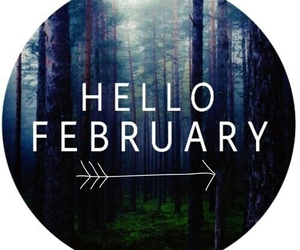 february, hello, and forest image