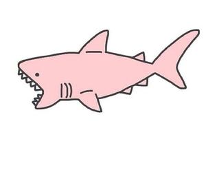 shark, pink, and overlay image