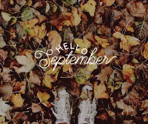 fall, September, and hello image