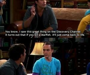 funny, the big bang theory, and sheldon image