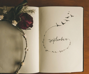 September, autumn, and flowers image