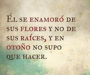 frases, autumn, and quotes image