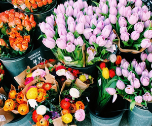 flowers, hipster, and beauty image