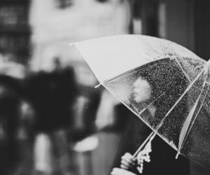 rain, umbrella, and girl image