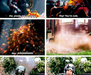 funny, Marvel, and antman image