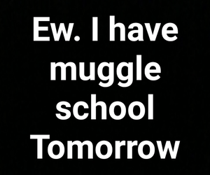 harry potter, no muggles, and school image