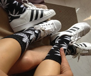 adidas, pale, and plant life image