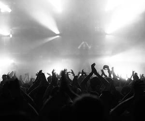 music, rave, and steve angello image