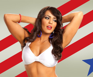 diva, wwe, and layla el image