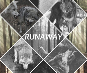cover, runaway, and story image