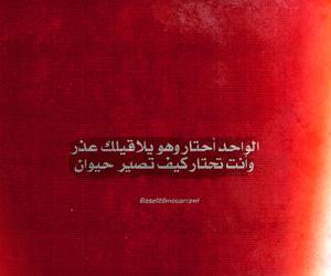 arabic, arabi, and اقتباس image
