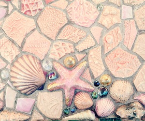 mermaid and shell image