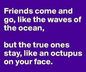 bff, friendship, and friendship quotes image