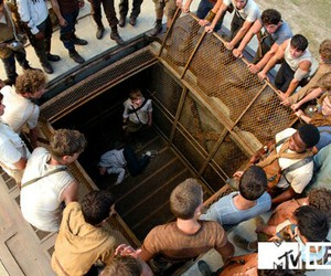 maze runner, gladers, and scorch trials image