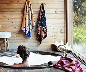 bath, relax, and home image