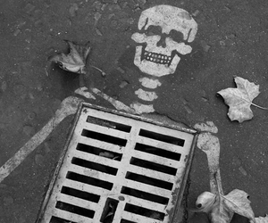 skeleton, art, and street image