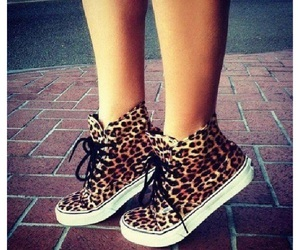 shoes, vans, and leopard image