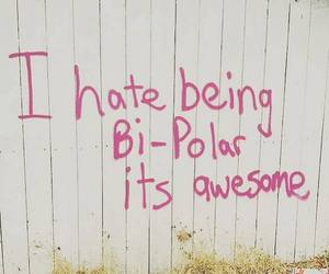 awesome, bipolar, and quotes image
