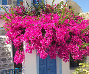 Greece, luxury, and nature image