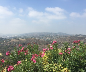 hollywood, los angeles, and summer image