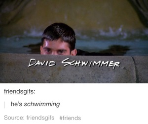 funny, friends, and David Schwimmer image
