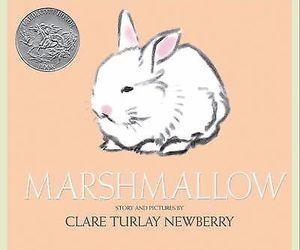 bunny book image
