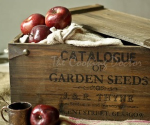 apples, autumn, and crate image